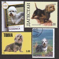 Dandie Dinmont Terrier * Int'l Dog Stamp Art Collection * Great Gift Idea *