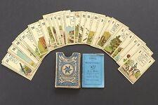 Antique C.L. Wüst Lenormand Fortune Telling Oracle Cards Deck Vintage