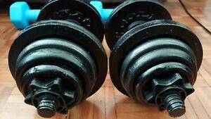 York Weights Dumbbells gym equipment bench press cast iron plates 38 kg 10 20 30