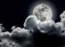 "Wallpaper Full MOON cloudy night sky wall art for walls ""Black"" photo wall mural"
