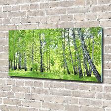 Acrylglas-Bild Wandbilder Druck 140x70 Deko Blumen & Pflanzen Birkenwald