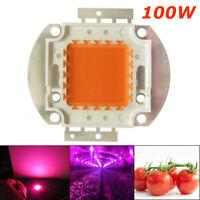 100W Vollspektrum LED COB Grow Light Lampe Vollspektrum für Blumen Gemüse Set