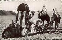 Algerien - ein Tränkebecken Rudimentäre (D6625)