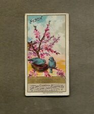 1888 LONE JACK LANGUAGE OF FLOWERS PEACH  TOBACCO CARD