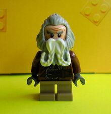 Lego Herr der Ringe Hobbit Oin aus Set 79004