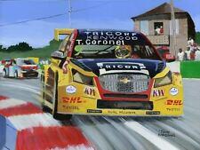 Painting Chevrolet RML Cruze TC1 WTCC Tom Coronel (NED) 2016 by Toon Nagtegaal