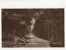 High Beeches Forest Row Sussex Vintage RP Postcard Sayer 555b