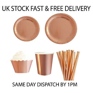 Polka Dot Sky Rose Gold Birthday Party Tableware Pack Paper Plates Cups Napkins