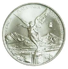 2005 Silver Mexican Libertad