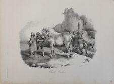 Jean Louis Theodore Gericault (French 1791-1824) Cheval Cauchois, Lithograph