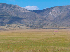 "RARE 12 ACRE NEW MEXICO RANCH ""TIERRA VALLEY""! HAS POWER! CASH SALE! NO RESERVE!"