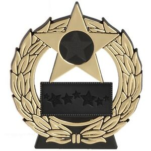 Star award, Attendance, Sports day Winner.Gold Silver or Bronze Free engraving
