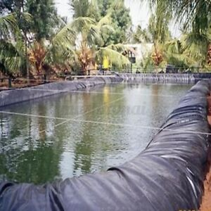 16 X 16ft Fish Pond Liner PVC Membrane Reinforced Gardens Pools Landscaping
