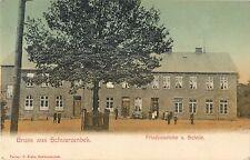 Gruss aus Schwarzenbek, Friedenseiche u Schule, Schwarzenbek Germany