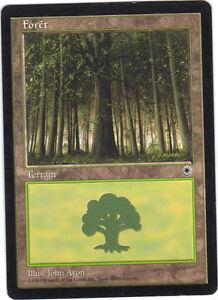 Zauber - Wald