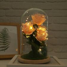 6in Led Llight Romantic Immortal Flower String Lights Living Room Bedroom Decor