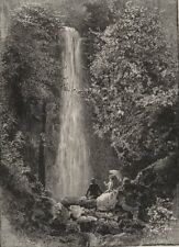 Nichol's Creek Falls. Dunedin. New Zealand 1890 old antique print picture