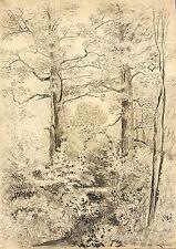 FRANZ EMIL ZEISING - Eichengruppe im Spreewald - Bleistift & Tusche 1875-1880