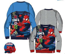 Disney Polyester Jumpers & Cardigans (2-16 Years) for Boys