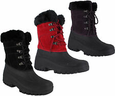 Snow, Winter Lace Up Synthetic Shoes for Women