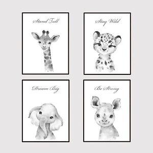 Safari Jungle Animal Boy's Bedroom Nursery Word/ Wall Art Picture Prints Decor