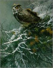 Robert Bateman - WINTER PINE-GREAT HORNED OWL - LTD ED