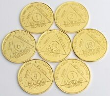 Recovery coin AA 2 Month Gold Plate Medallion token sobriety affirmation bday