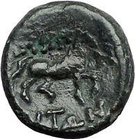 187BC Authentic Ancient Greek coin of AMPHIPOLIS MACEDONIA POSEIDON HORSE i55655