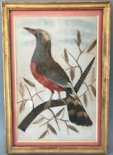 Folk Art Bird with Actual Feathers Vintage 1990 Framed Matted Great Condition