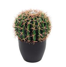 Artificial 25cm Exotic Golden Barrel Cactus Plant Realistic Echinocactus Cacti