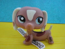 ORIGINAL Littlest Pet Shop Dachshund Dog #1631