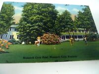 Postcard Vintage Lot Mammoth Cave Hotel Kentucky 1950