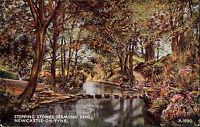 Newcastle upon Tyne England AK 1948 Jesmond Dene River Fluß Stepping Stones Wald