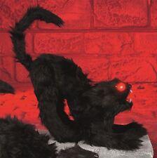 30cm Noir Sorcière D'Halloween Chat Avec Rouge Yeux Lumière et Son Décoration