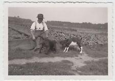 (F17495) Orig. Foto Hund u. Ziege käpfen, Mann am Beet, Gartenbaubetrieb 1930er