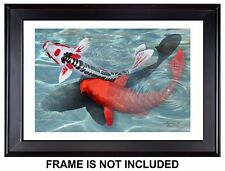 Karasu Live Koi Fish Giclée Print of Koi Shadow from Original Digital Painting