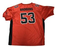 One 1 Authentic Game Worn Used Wisconsin Badgers Football
