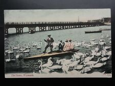 Dorset WEYMOUTH The Swans shows man in boat feeding Swans c1905 by J.W. & S. 852