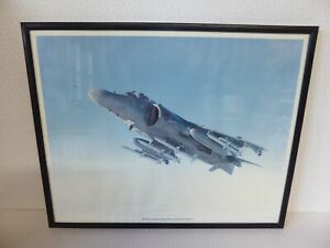 British Aerospace PLC 1990 Royal Navy Sea Harrier FRS.2 Framed Picture