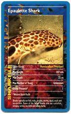 Epaulette Shark - Sharks - Top Trumps Card (C457)