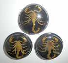 Insect Cabochon Golden Scorpion 38.5 mm Round inner 35 mm on Black 3 pieces Lot