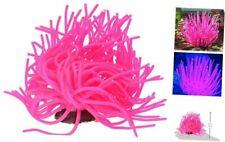 New listing Aquarium Decoration, Anemone Pink