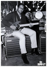 """Bo Diddley New A1 Size 84.1cm x 59.4cm - 33"""" x 24"""" Black and white Poster"""