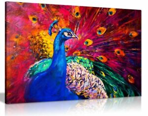 Coloured Peacock Canvas Wall Art Picture Print