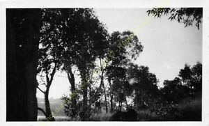 Original Photo MADAGASCAR 1948 n21