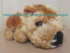 Japan Prize Only The Dog Strange Ratio Series Shiba Inu Fuzzy Plush M
