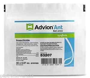 Advion Ant Bait Arena Bait Stations 1 bag Ant Control