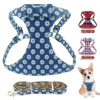 Soft Mesh Dog Harness and Leash for Small Medium Dogs Cute Bowknot Walking Vest