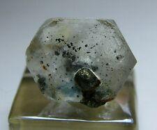 Awesome Apatite Crystal with Pyrite!!! Ashio, Shimotsuke Japan
