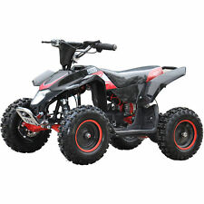 Ride-on Electric Quads
